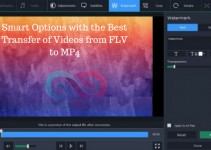 Best Transfer of Videos from FLV to MP4