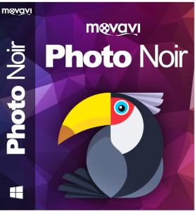 Movavi Photo Noir - Review